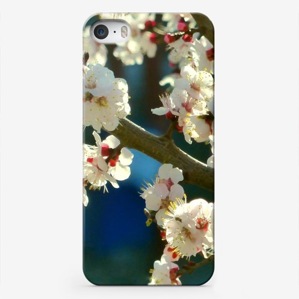 Чехол iPhone «Яблоня в цвету»