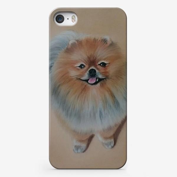Чехол iPhone «Шпиц»