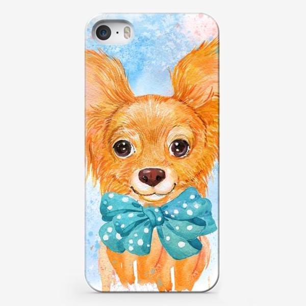 Чехол iPhone «собака той-терьер.акварель»