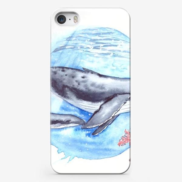 Чехол iPhone «Кит с китенком на фоне круга море и коралл»