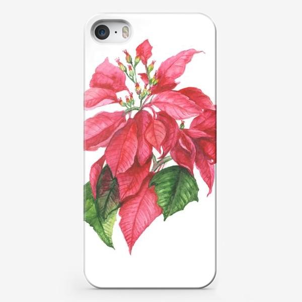 Чехол iPhone «Пуансеттия. Рождественская звезда»