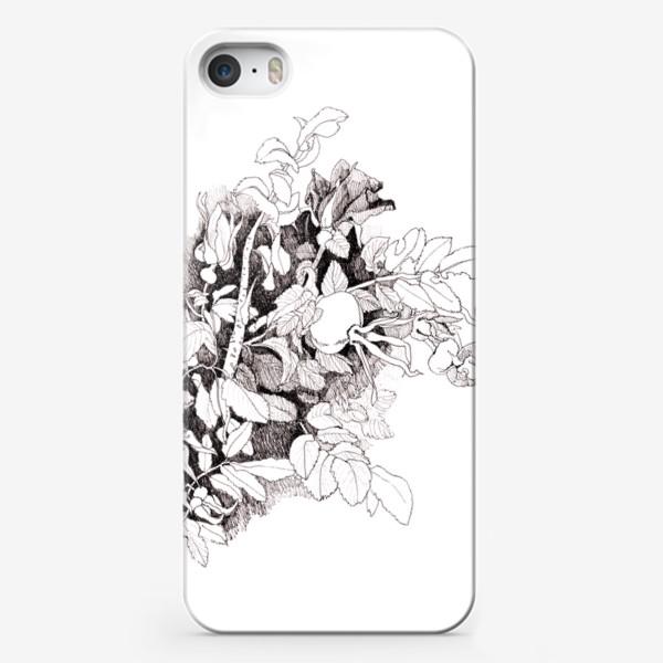 Чехол iPhone «Шиповник »