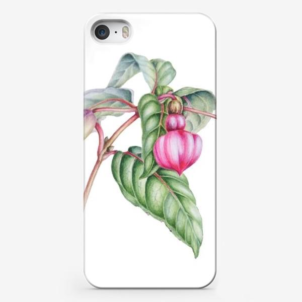 Чехол iPhone «Бутон фуксии»