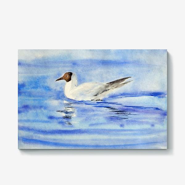 Холст «Чайка на воде»