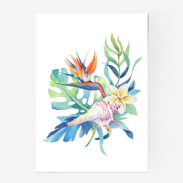 Постер «Тропики. Ракушка и монстера»