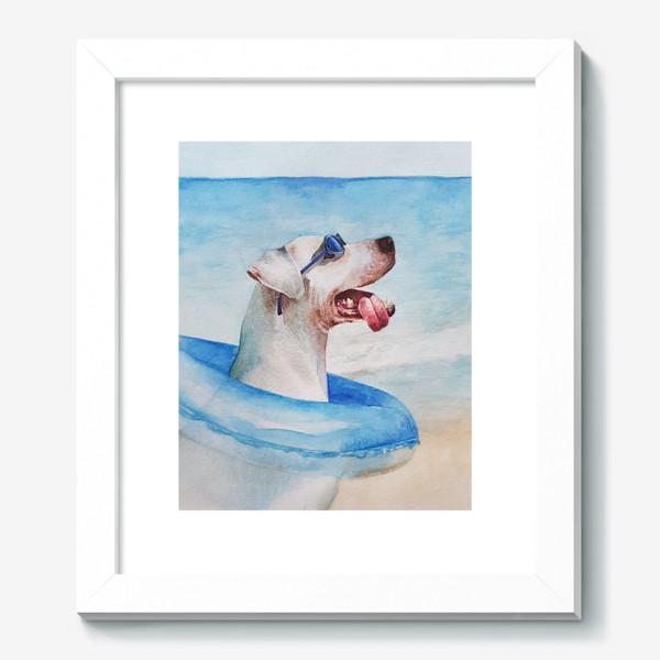 Картина «Собака в очках и с надувным кругом»