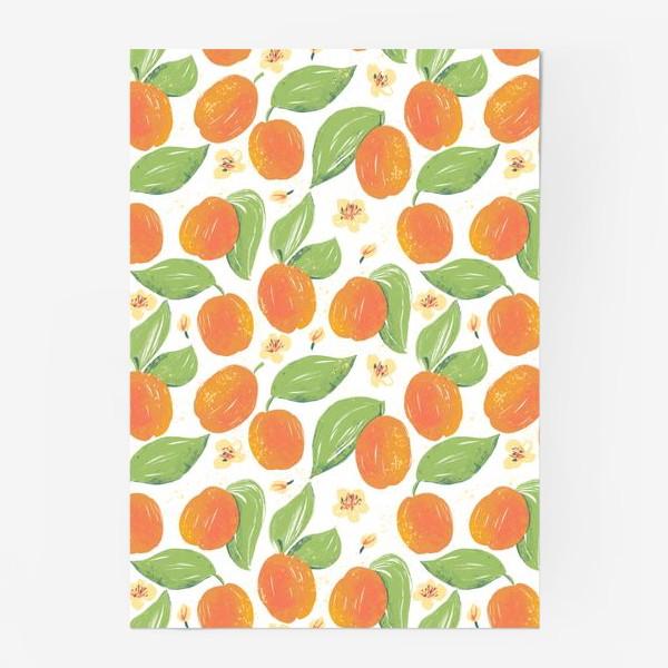 Постер «Абрикосовый сад в цвету. Спелый фрукт абрикос. Фрукты абрикосы. Весеннее цветение дерева.»