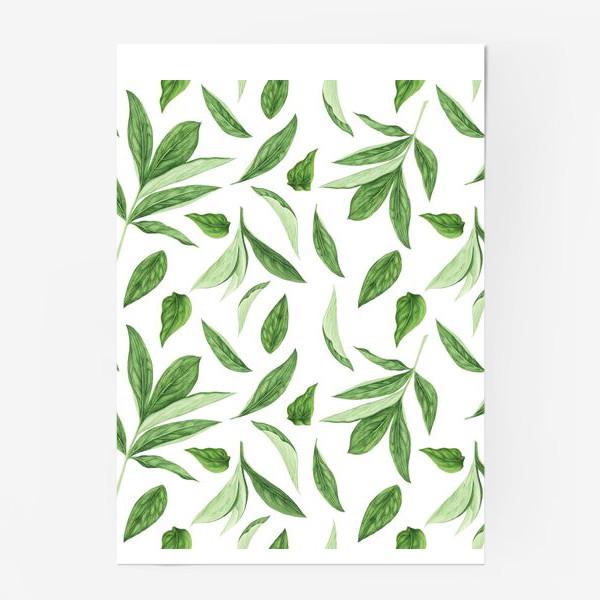 Постер «Листья пиона»