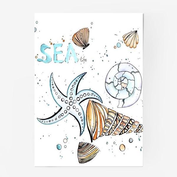Постер «Море. Лето. Ракушки.»