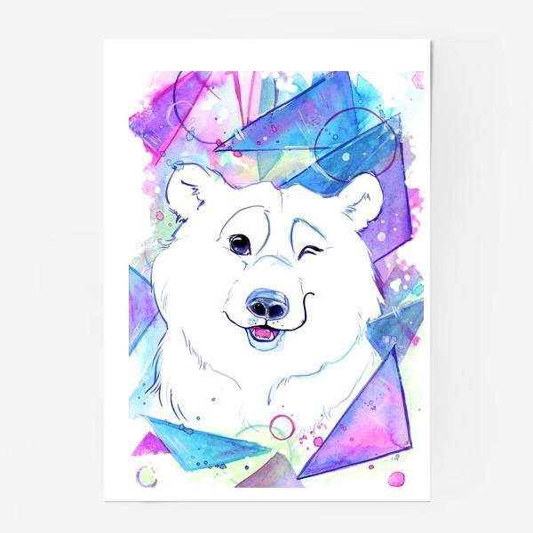 Постер «белый мишка»
