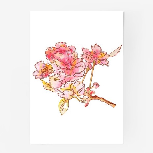 Постер «Цветы розовые»