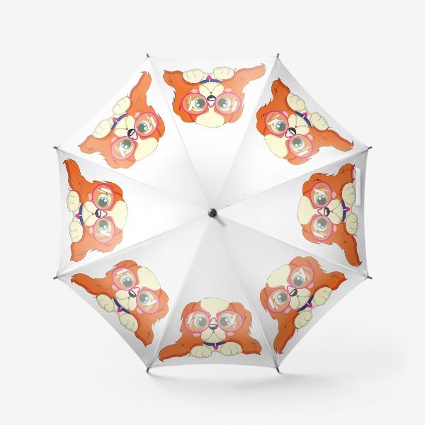 Зонт «Кавалер кинг чарльз спаниель»