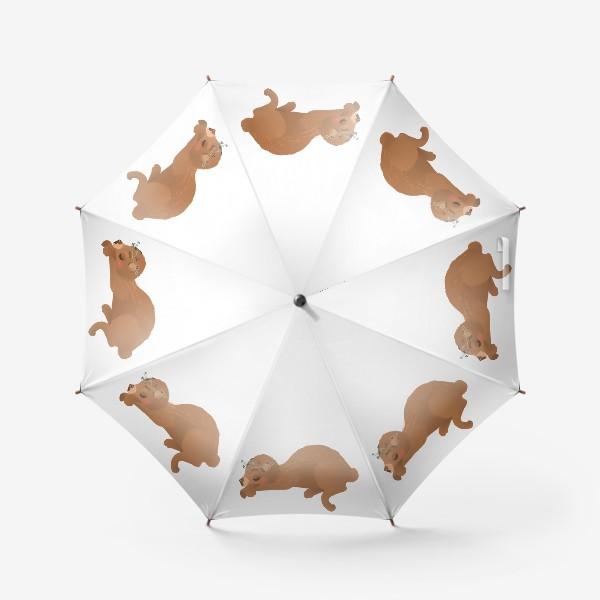 Зонт «Сплюшка Соня»