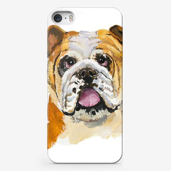 Чехол iPhone «Английский бульдог»