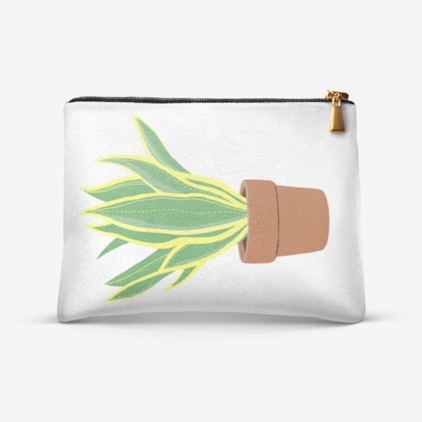Косметичка «Сансевиерия. Растение в горшке.»