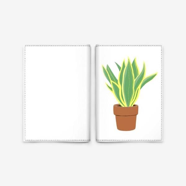 Обложка для паспорта «Сансевиерия. Растение в горшке.»