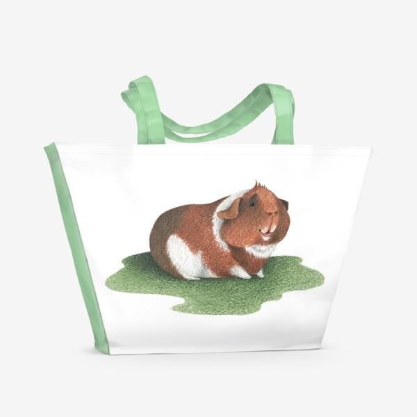 Пляжная сумка «Морская свинка (американский тедди)»