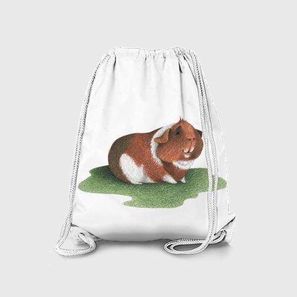 Рюкзак «Морская свинка (американский тедди)»