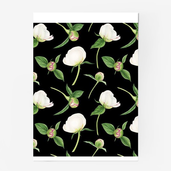 Постер «Бутоны белых пионов на черном фоне»