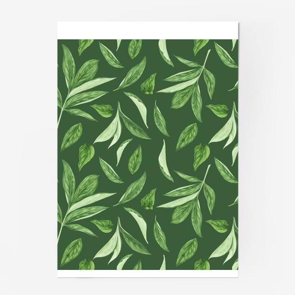 Постер «Листья пиона на зеленом фоне»