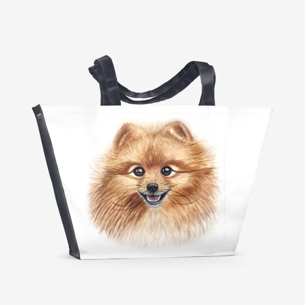 Пляжная сумка «Шпиц»