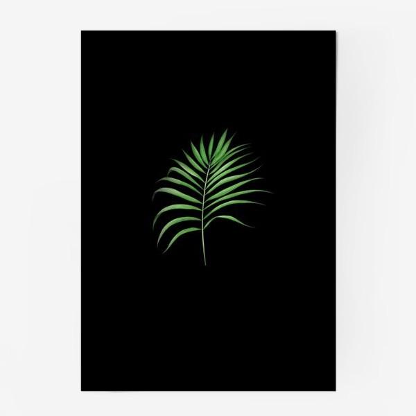 Постер «Лист пальмы на черном фоне»