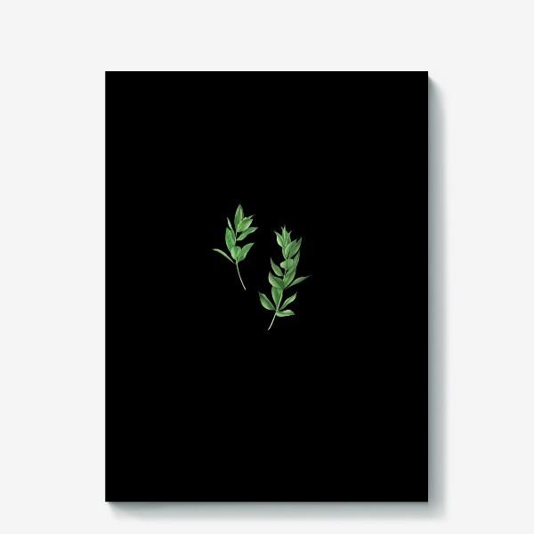Холст «Ветки эвкалипта на белом фоне»