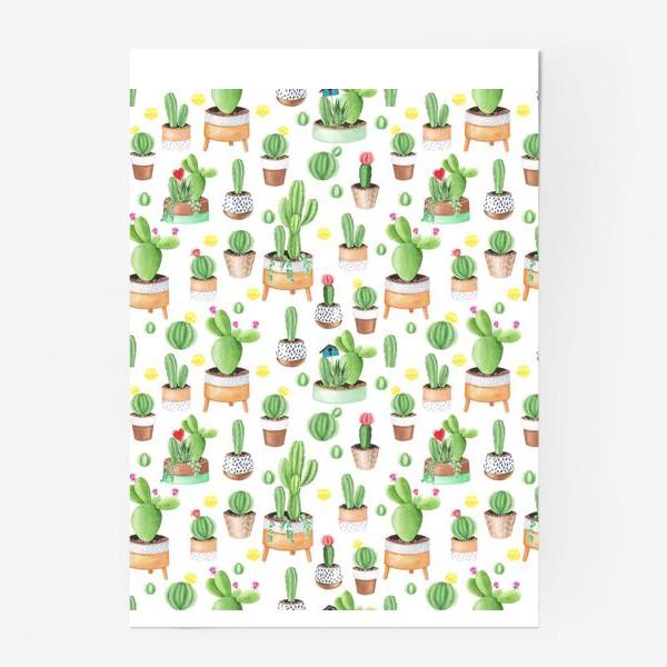 Постер «Кактусы в горшках»