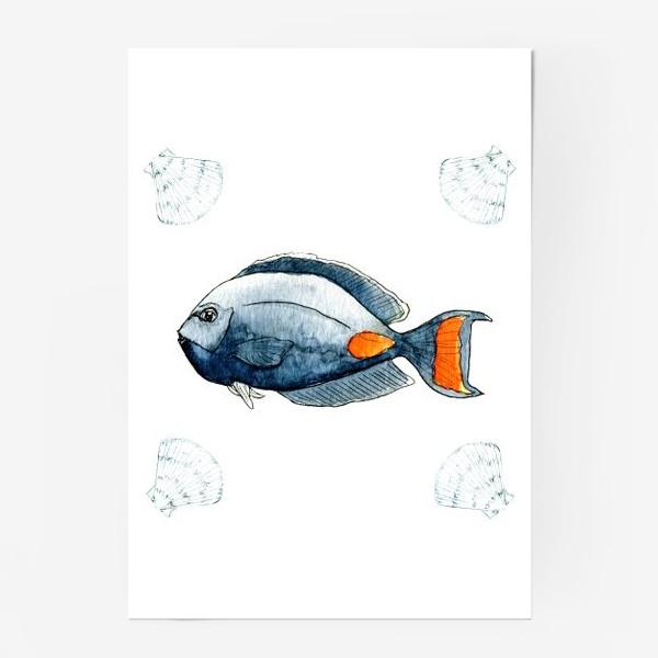 Постер «Морская рыбка»