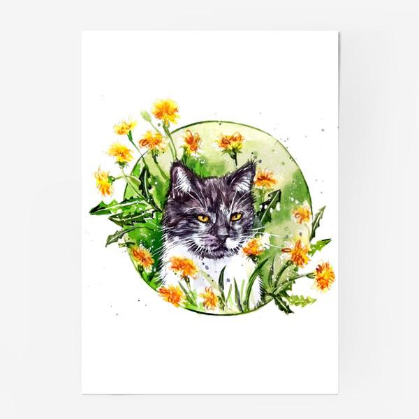 Постер « кот в одуванчиках»