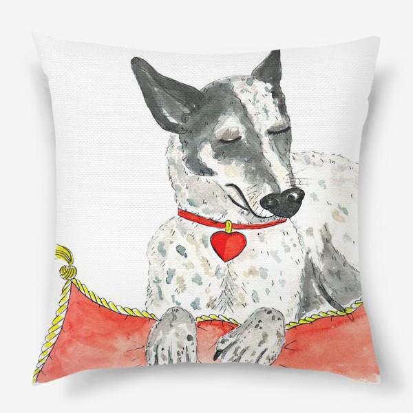 Подушка «Акварельный портрет собаки (порода хилер) на красной подушке»