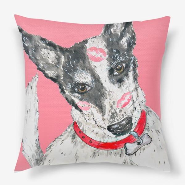 Подушка «Собака породы хилер в поцелуйчиках»