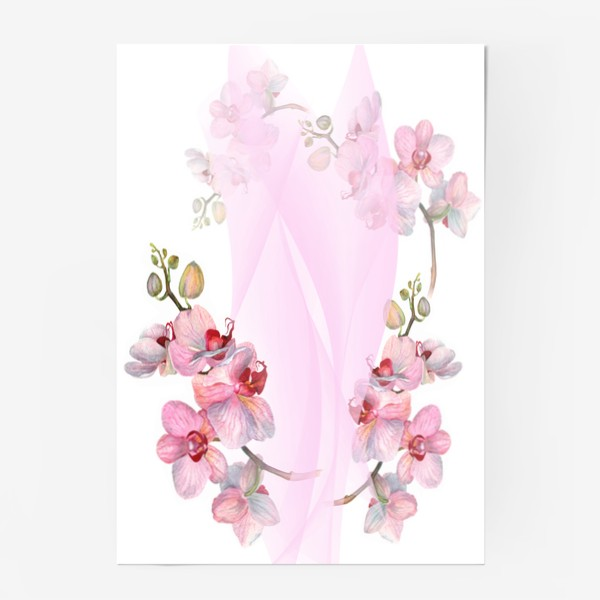Постер «Орхидеи»