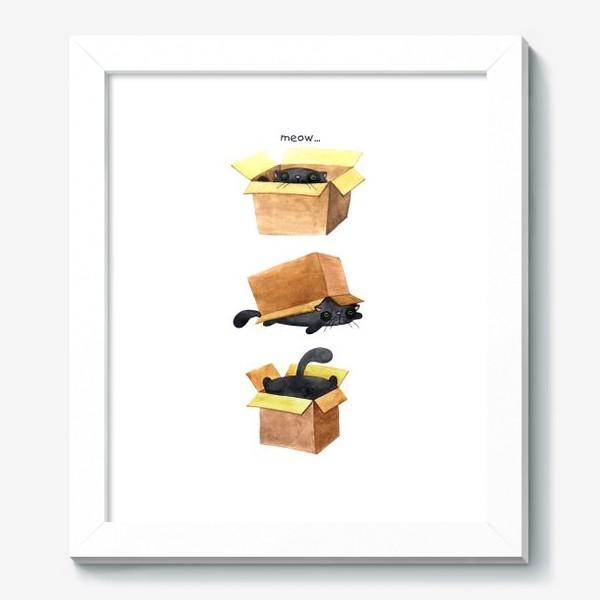 Картина «Cat and box 5»
