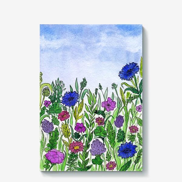 Холст «Полевые цветы. Василёк»