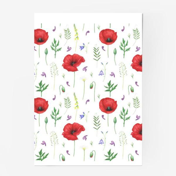Постер «Луговые цветы: маки, ромашки, колокольчики»