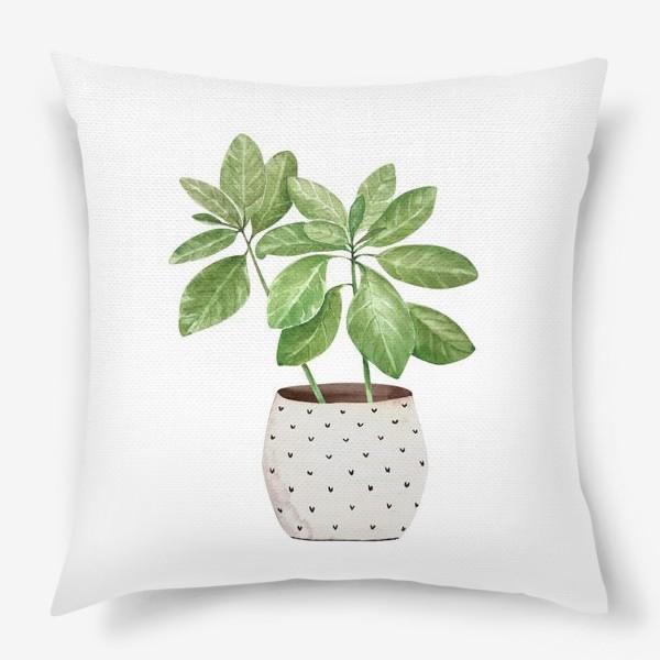 Подушка «зеленое комнатное растение в горшке, крупным планом на белом фоне иллюстрации акварель»