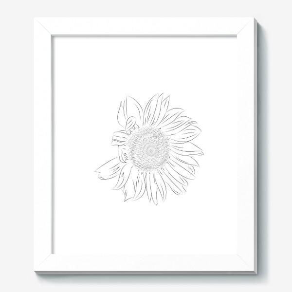 Картина «Подсолнух. Монохромный ботанический скетч»