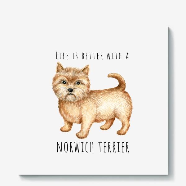 Холст «Норвич терьер, смешная собака»