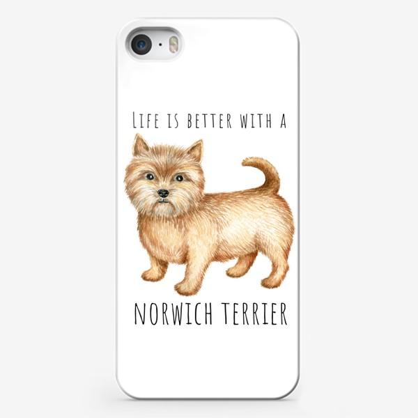 Чехол iPhone «Норвич терьер, смешная собака»