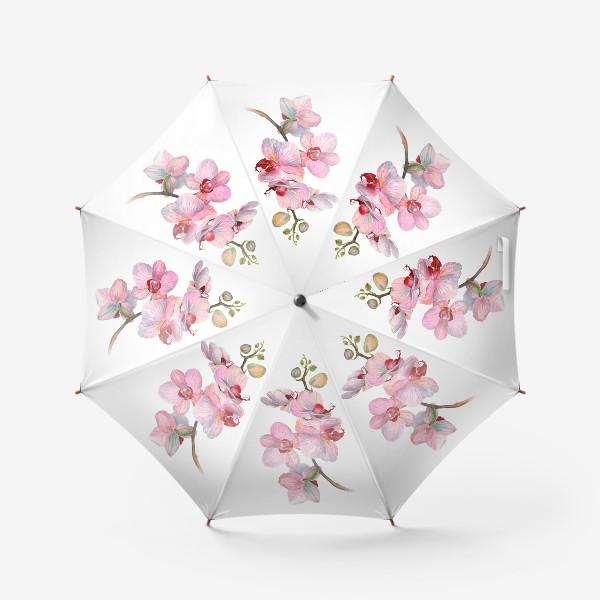 Зонт «ВЕТОЧКА ОРХИДЕИ»