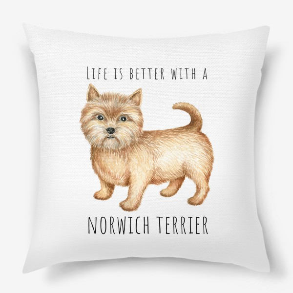 Подушка «Норвич терьер, смешная собака»