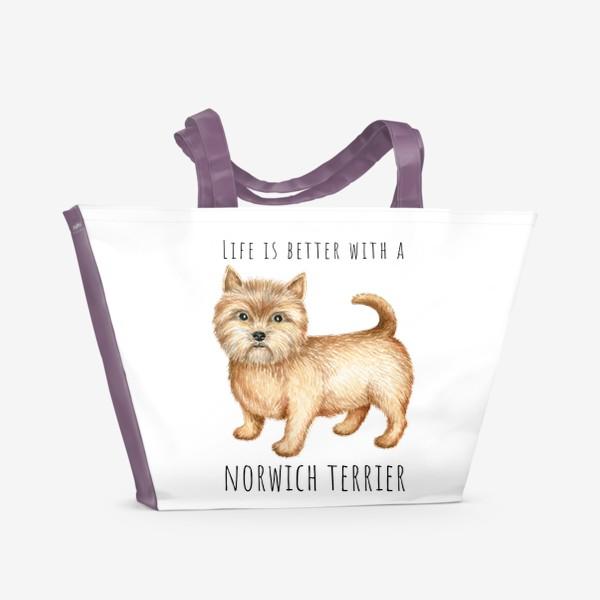 Пляжная сумка «Норвич терьер, смешная собака»