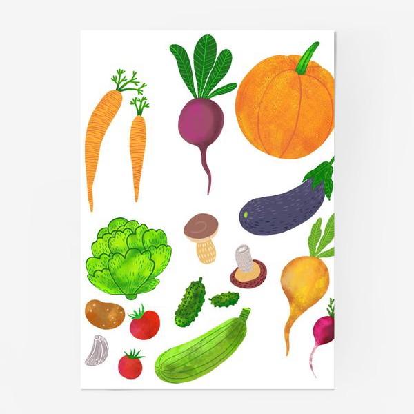 Постер «Овощи на белом фоне»