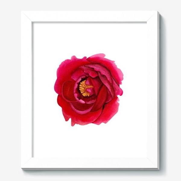 Картина «Темно-розовый пион»