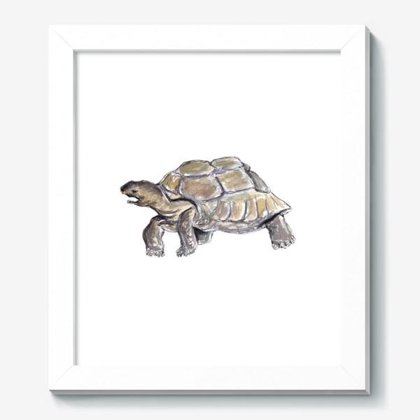 Картина «Черепаха. Нас не догонишь...»