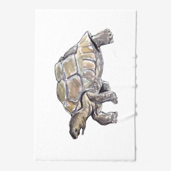 Полотенце «Черепаха. Нас не догонишь...»