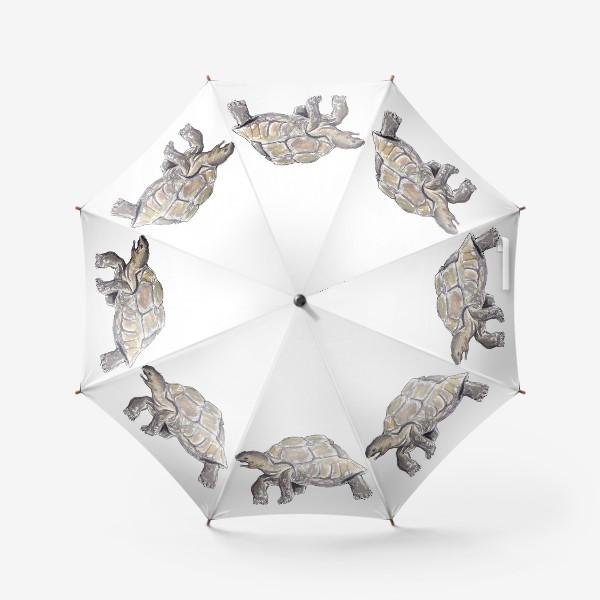 Зонт «Черепаха. Нас не догонишь...»