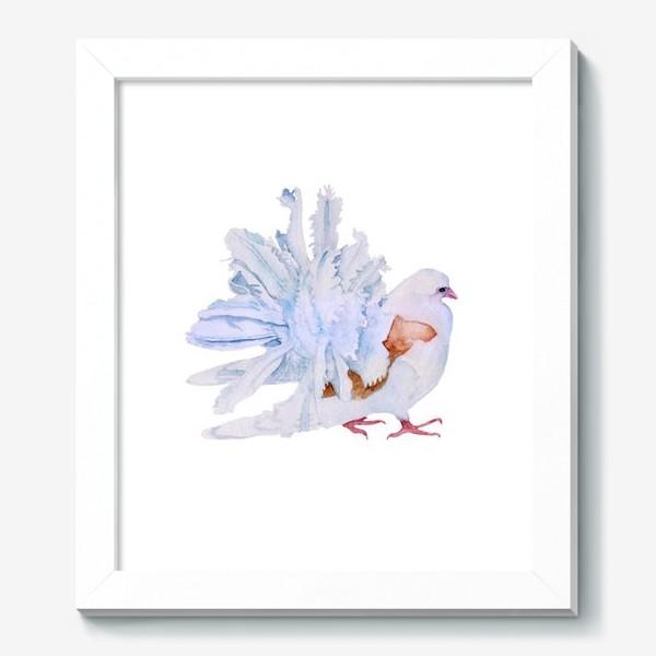 Картина «Голубь»