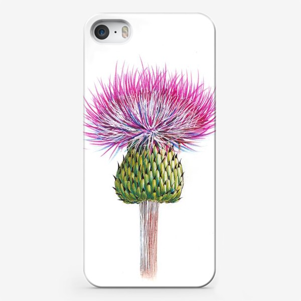 Чехол iPhone «Цветок Чертополоха»